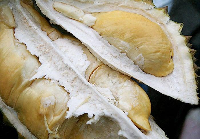 White Flesh Of Durian