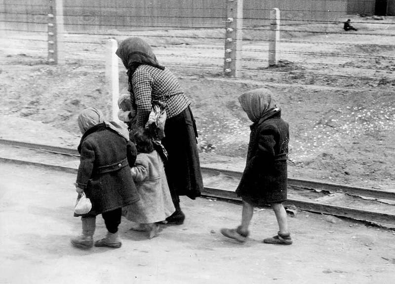 Hungarian Children At Auschwitz