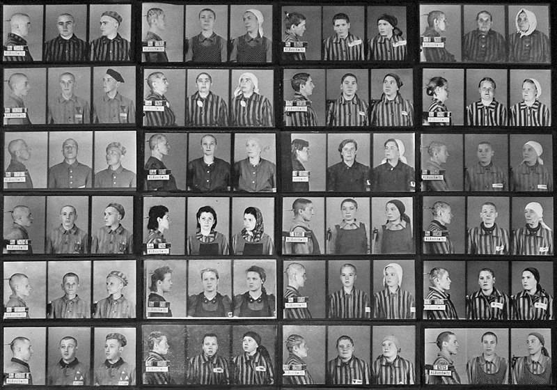 Auschwitz Prisoner Photos By Wilhelm Brasse