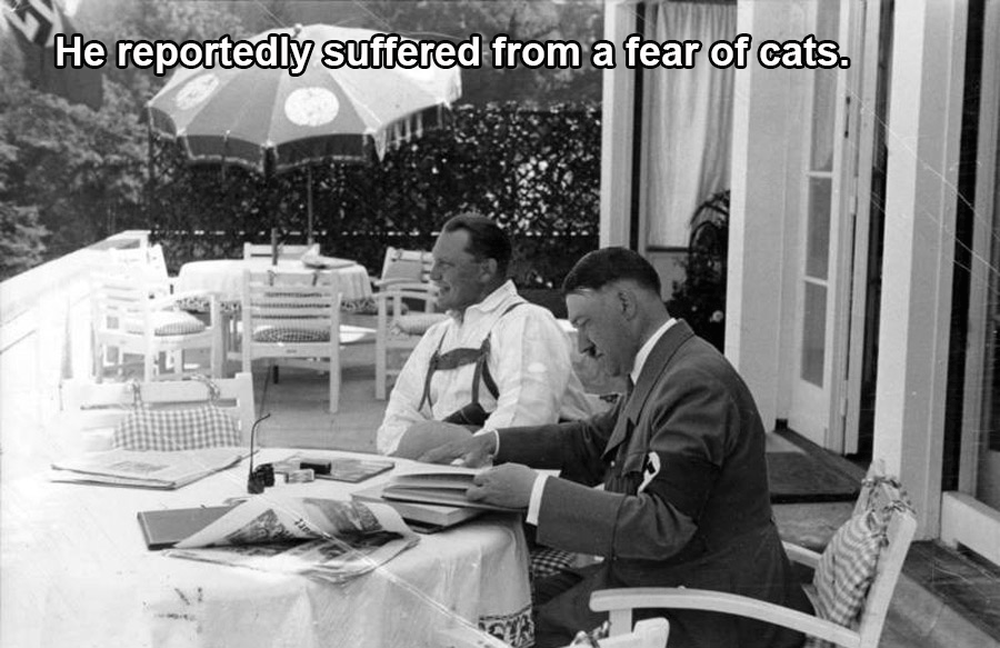 Hitler's Fear Of Cats