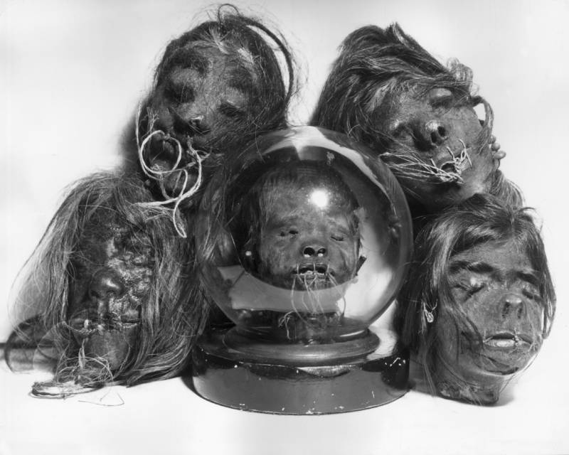 Group Of Shrunken Heads