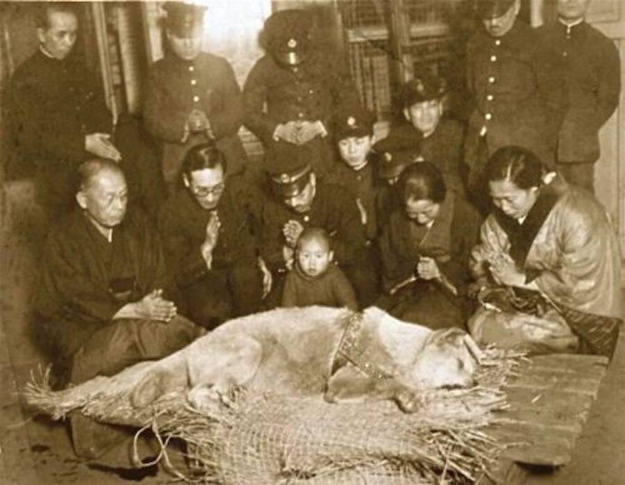 Tokyo Mourns Hachiko