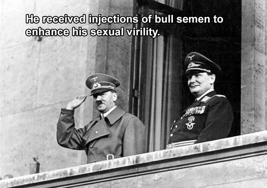 Hitler Bull Semen