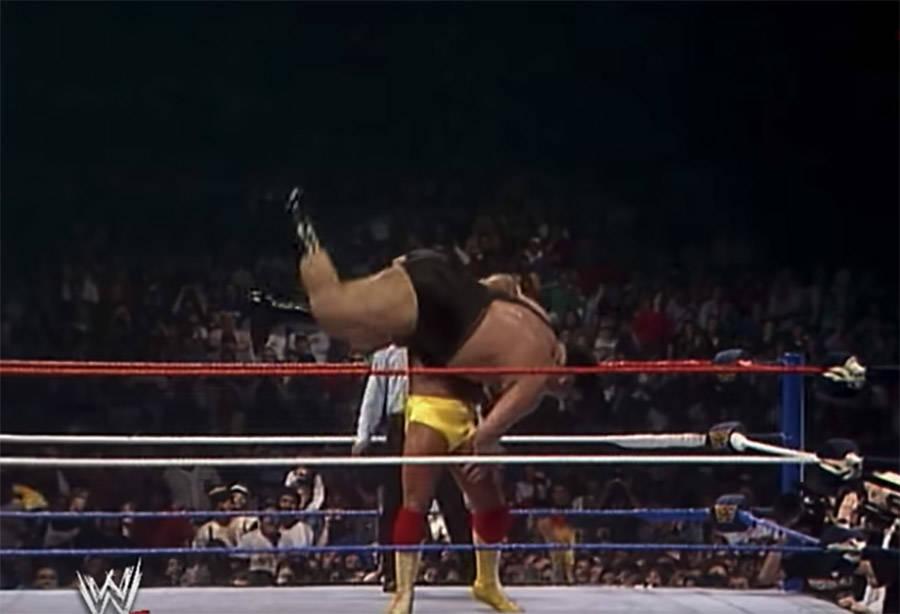Hogan Slams Andre
