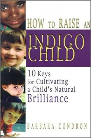 Indigo Children Raising Book