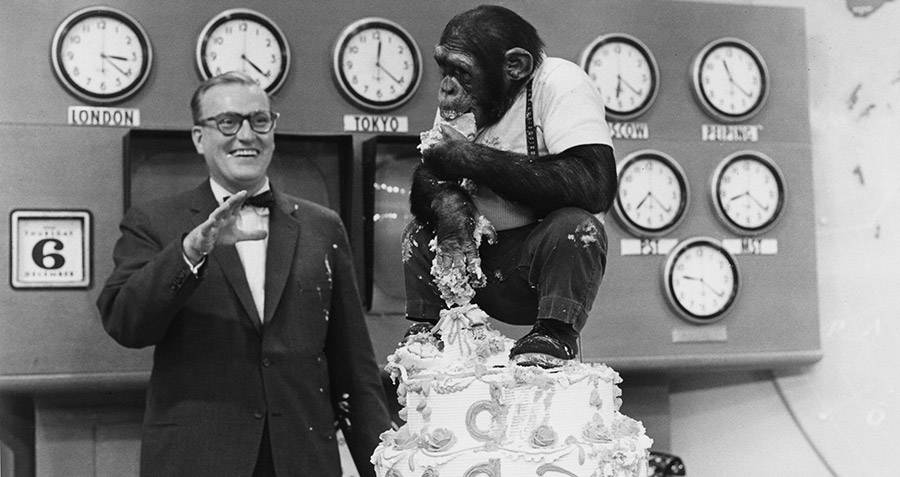 J Fred Muggs Eating Cake