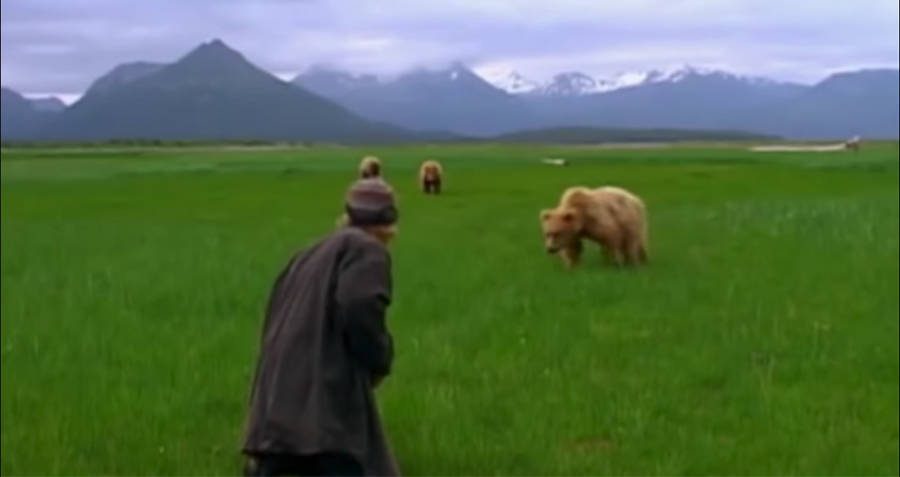Timothy Treadwell And A Grizzly Bear