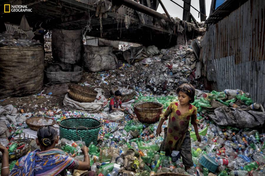 Bottle Sorting Plastics
