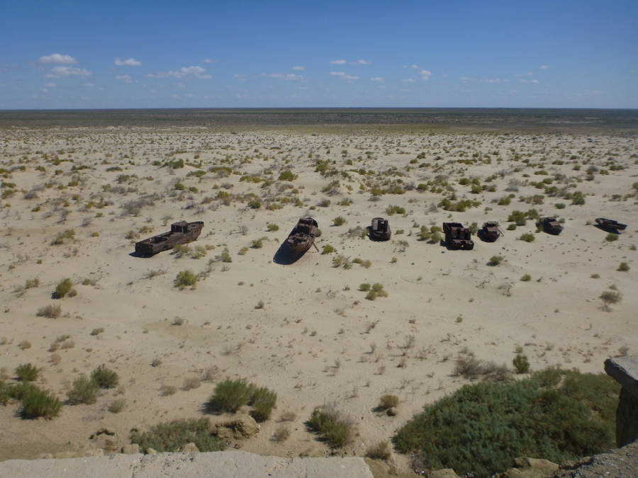 Aral Sea Coastline