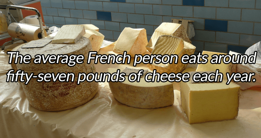 Blocks Of Cheese