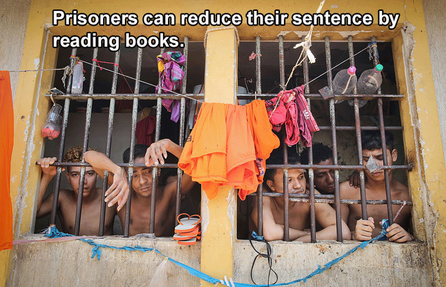 Interesting Facts About Brazil Prisoners