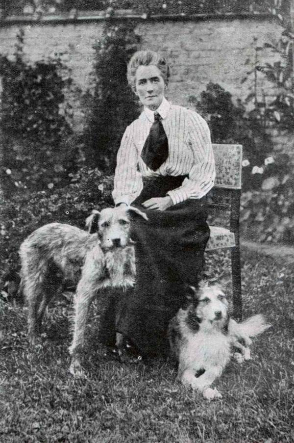 Cavell Dogs