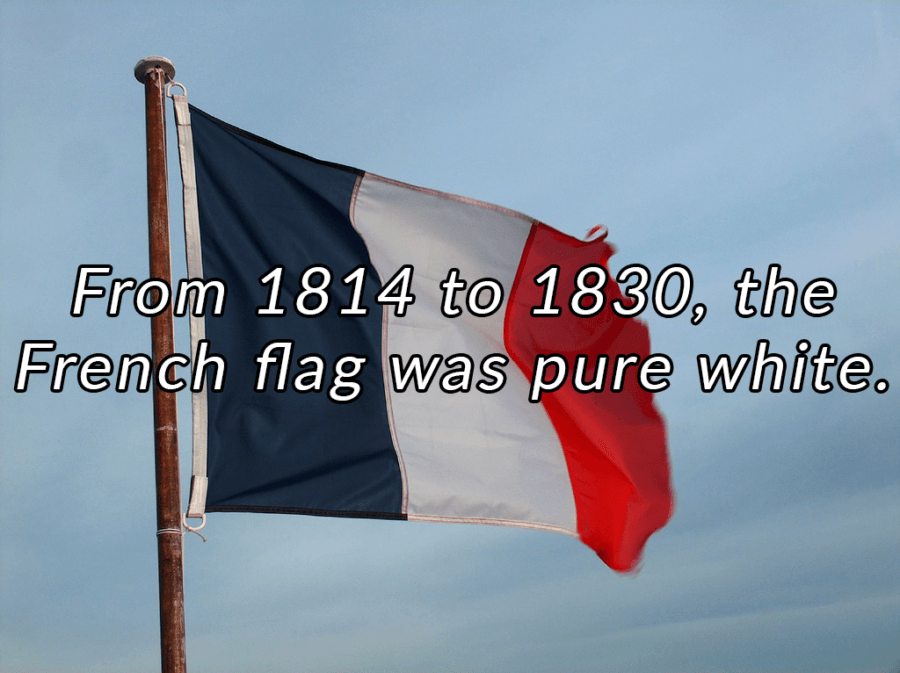 Interesting France Facts Flag
