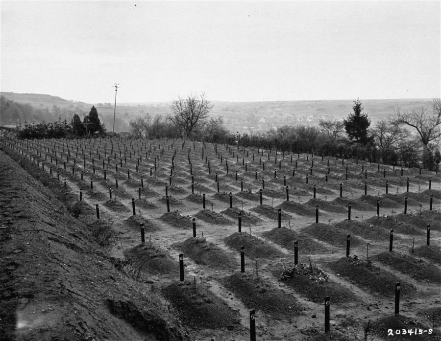 Graves Of Nazi Euthanasia Victims