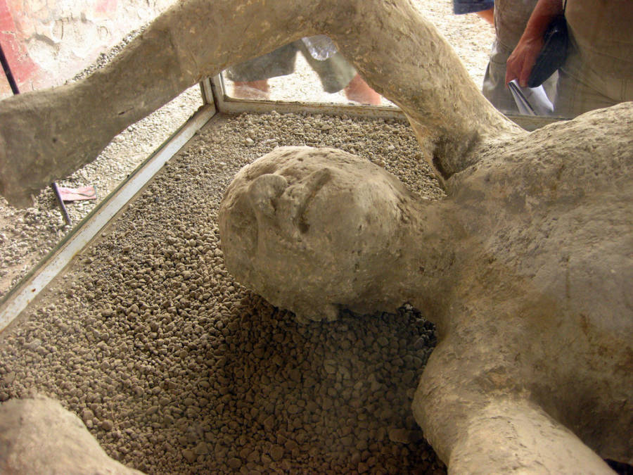 Head Of Pompeii Body