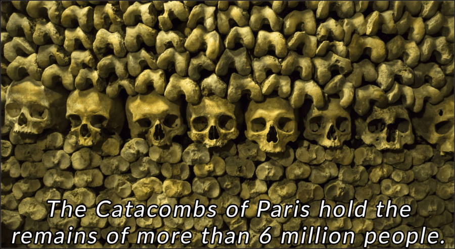 Interesting France Facts Catacombs