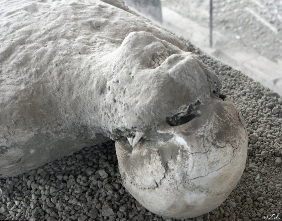 Bodies Of Pompeii