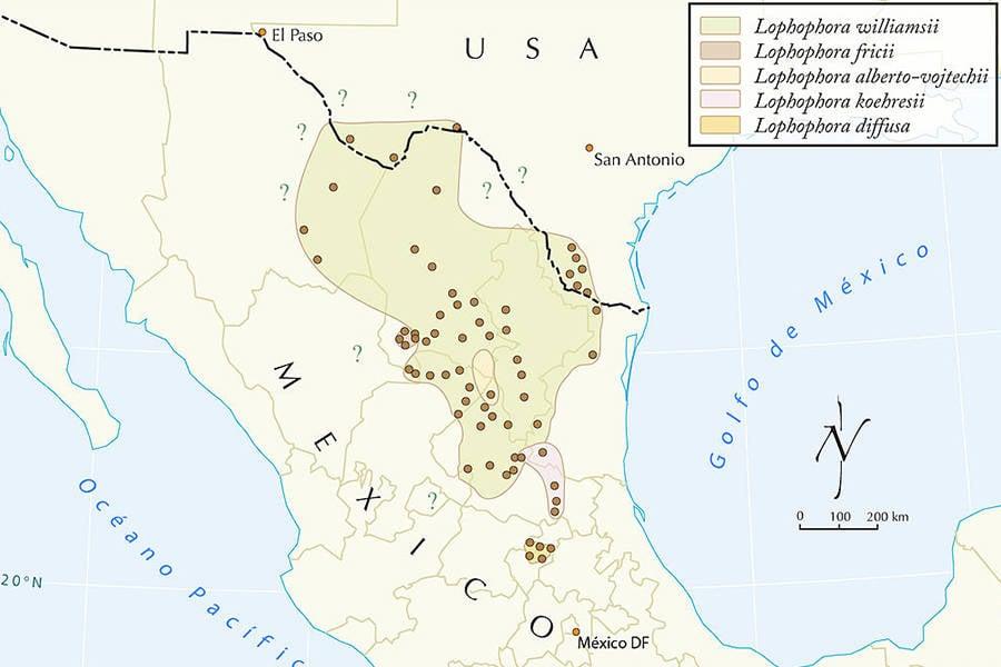 Peyote Map