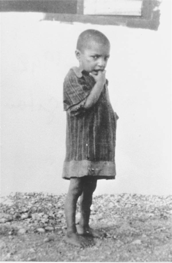 Pictures Of The Roma Genocide