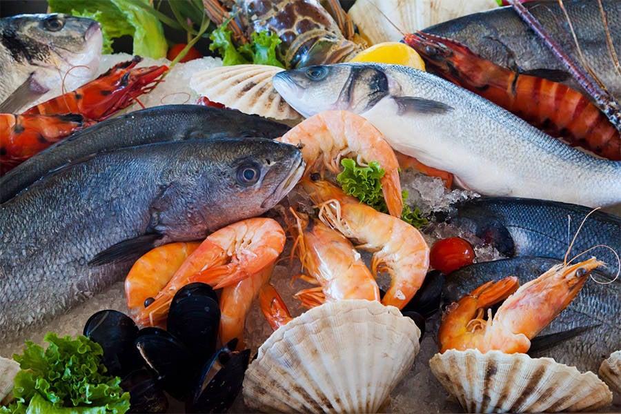 Seafood Pregnancy