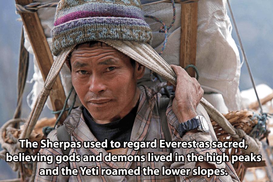 Sherpa Portrait