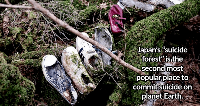 Shoes In Suicide Forest