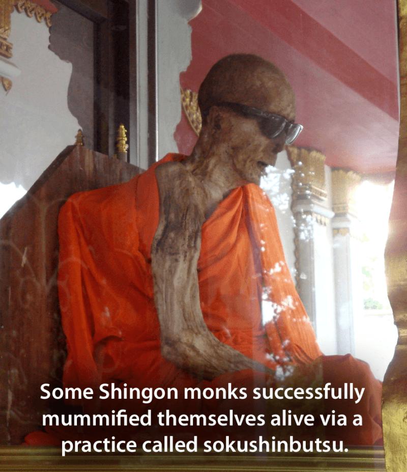 Sokushinbutsu Mummy Monk