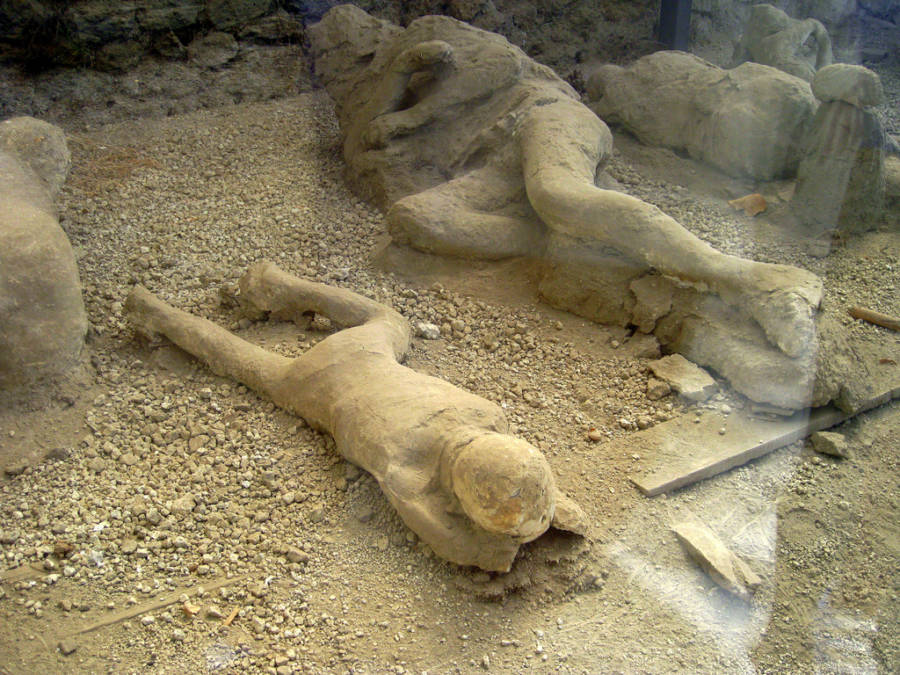 The Bodies Of Pompeii