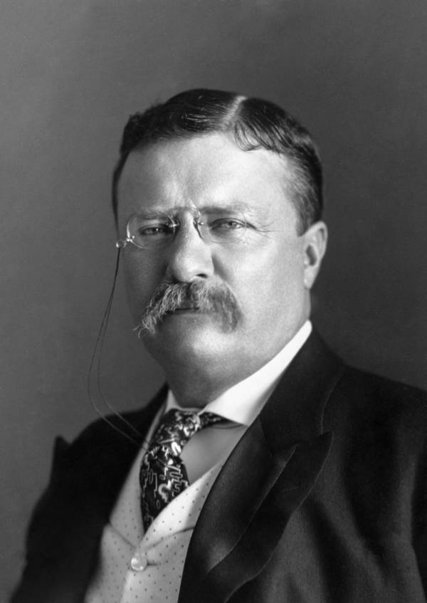 Eugenics Movement Theodore Roosevelt