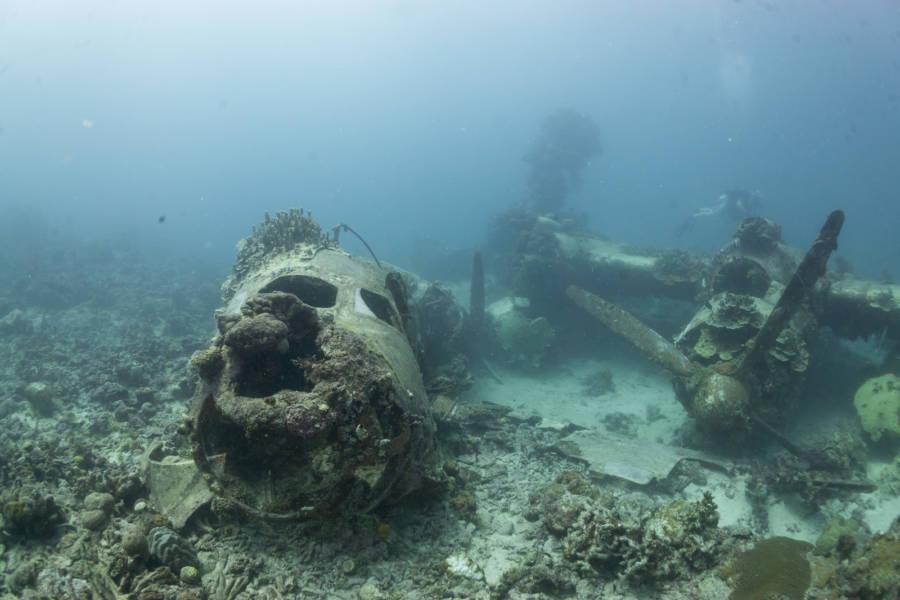 Truk Lagoon: The Haunting WWII Graveyard Under The Sea