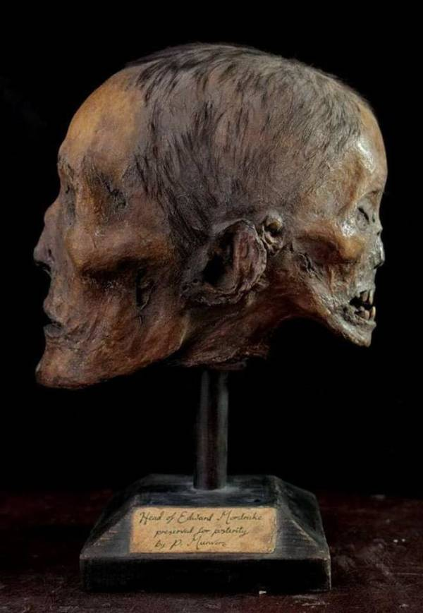 Mordrake Paper Maiche Head