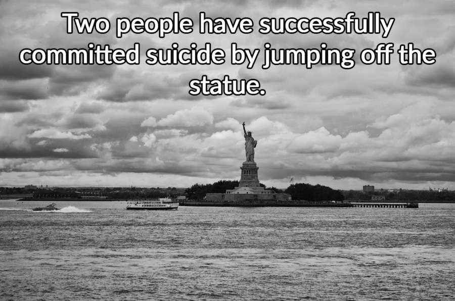 Successful Suicide