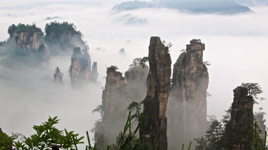 Tianzi Mountain Mist