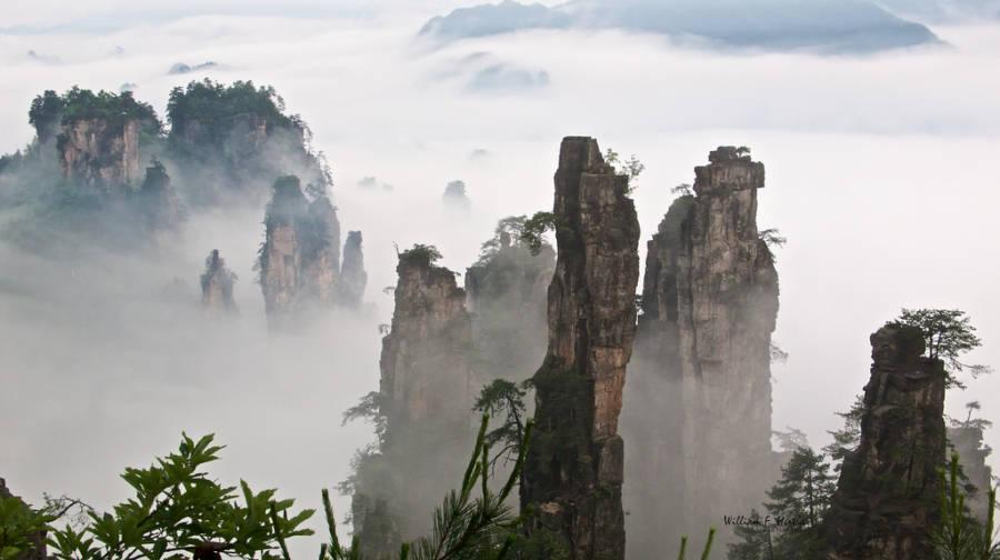 Tianzi Mountain Mist