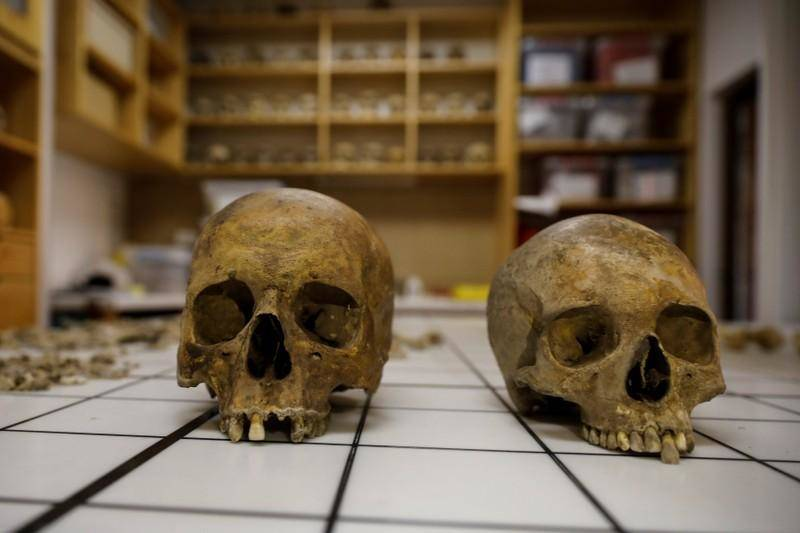 Unearthed Skulls