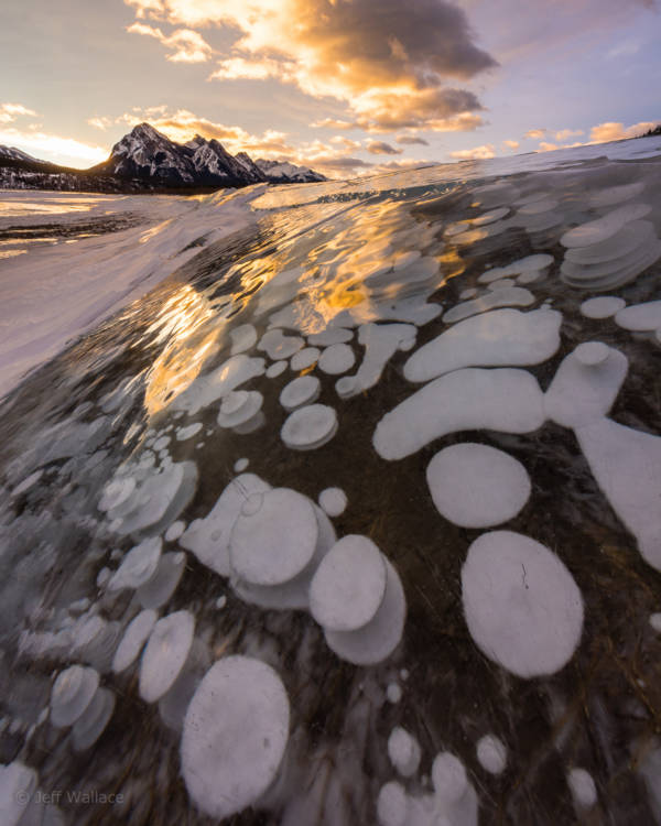 Lake Abraham Bubbles