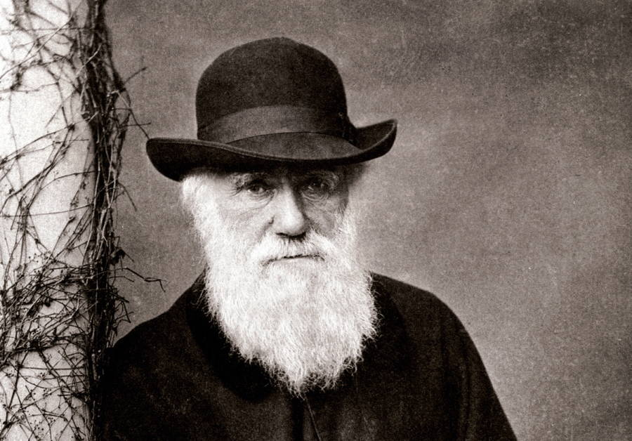 scientific cousins the relationship between charles darwin and francis galton