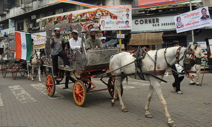 Indian Horse Cart