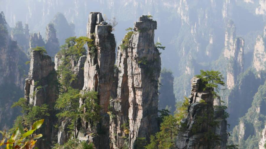 Tianzi Mountain Landscape