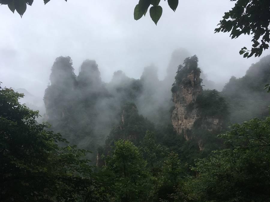 Tianzi Mist