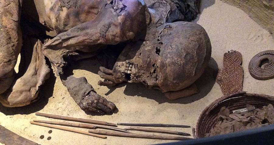 Fred Turin Mummy