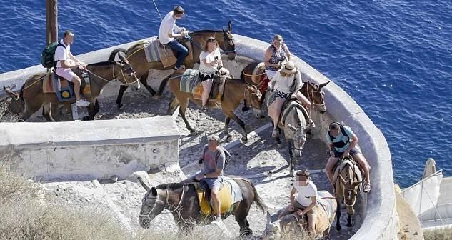 Group Tourists On Donkeys