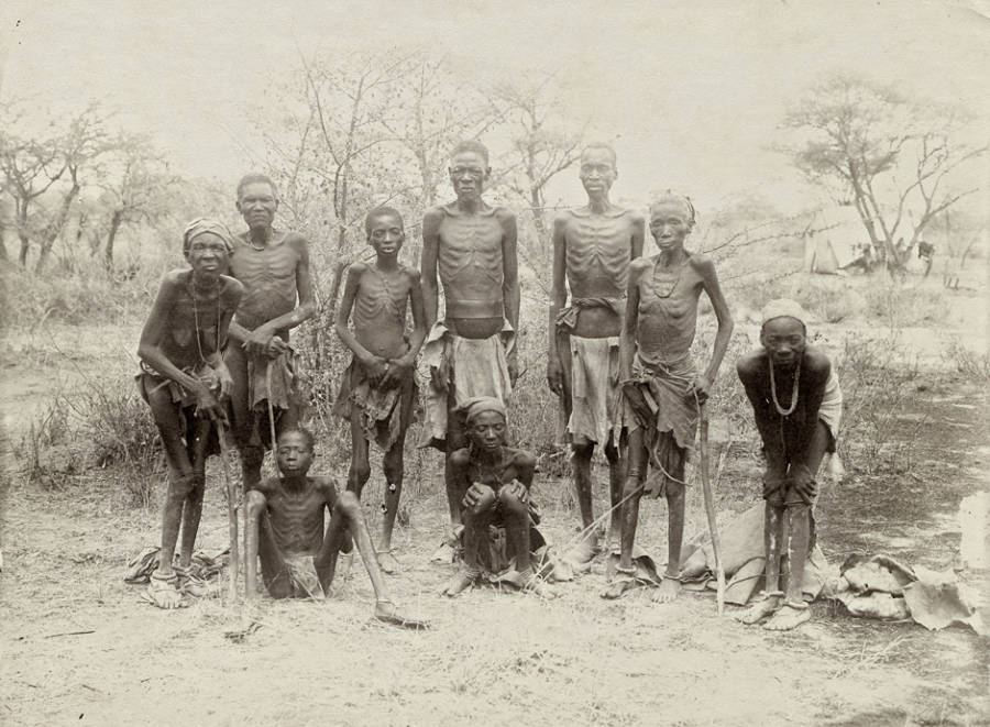 Herero Survivors