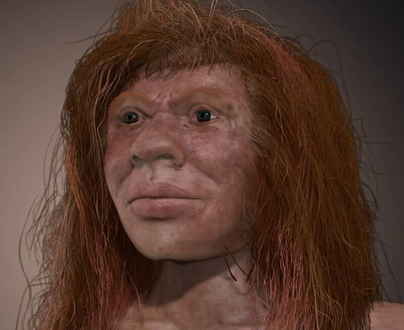 Neanderthal Denisovan Hybrid Girl