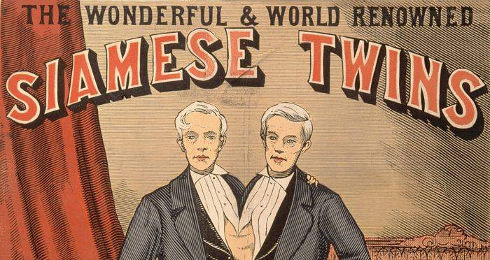 Poster For Siamese Twin Show