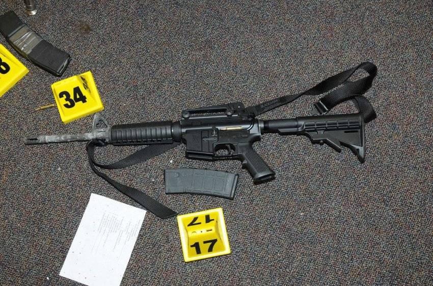 Sandy Hook Gun