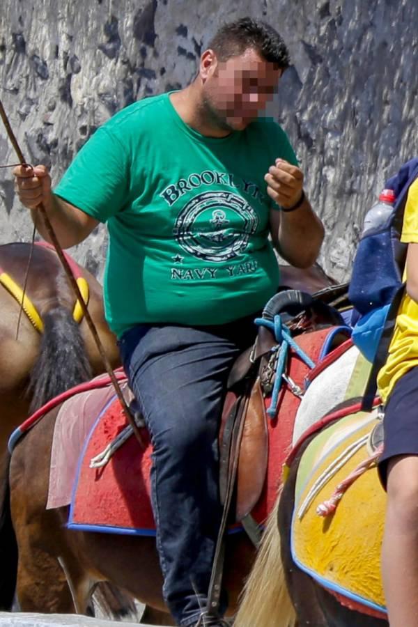 Tourist On Santorini Donkey