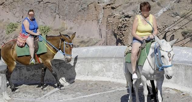 Tourists On Donkeys