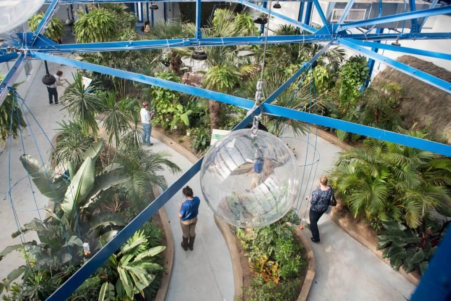 Insectarium Philadelphia