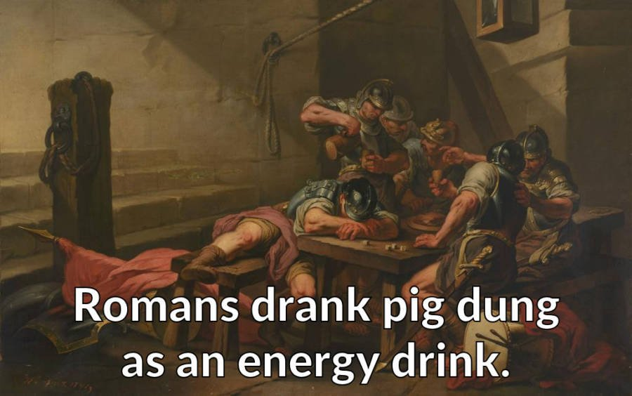 Romans Drank Pig Dung